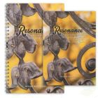 Resonance Self-guided Meditation Book and CD Set