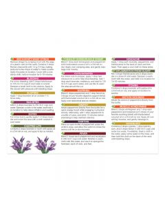 """""""Essential Oils For First Aid"""" Oil Reference Card (Pack of 10)"""