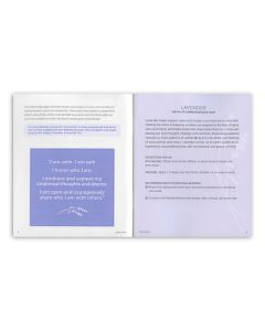 """""""Healing Home and Family"""" Booklets (Pack of 10)"""
