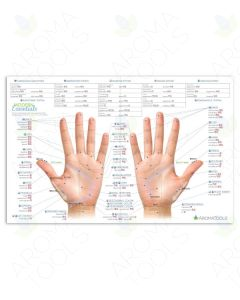 Modern Essentials Reflexology Chart, 10th Edition