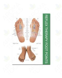 """Reflex Points for Foot and Hand Chart (8-1/2"""" x 11"""")"""