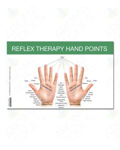 "Mini Reflex Points for Foot and Hand Chart (8½"" x 5½"")"