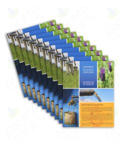 """""""My Business Overview"""" Brochure (Pack of 10)"""