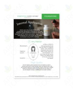 "Essential Educators: ""Internal Application"" Mini Tear Pad (50 Sheets)"
