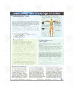 """""""The Endocannabinoid System and its Messengers: A Basic Overview"""" Tear Pad (25 Sheets)"""