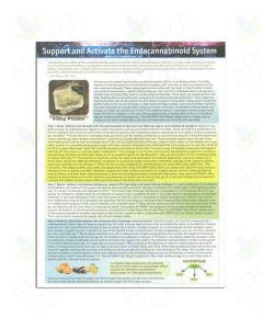 """Support and Activate the Endocannabinoid System"" Tear Pad (25 sheets)"