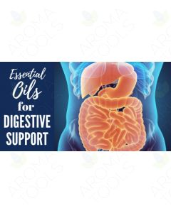 """Essential Oils for Digestive Support"" Essential Oil Academy Digital Online Class"